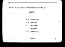 Therapiebuch Semantik Aufgaben Synonyme